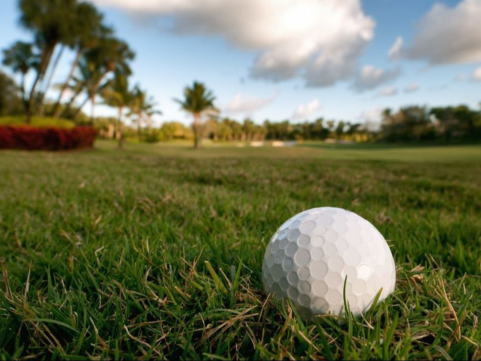 A golf ball sits perched on a tee on a beautiful Florida course.